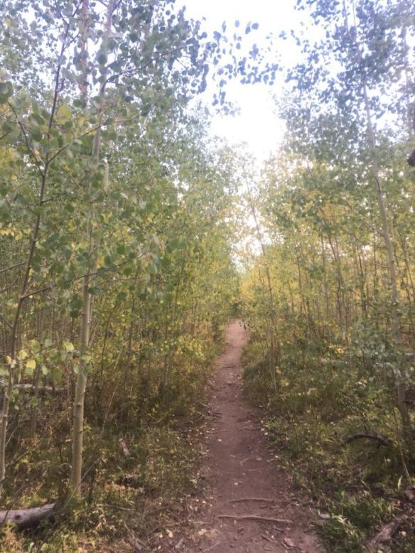 aspen trail 8-2018