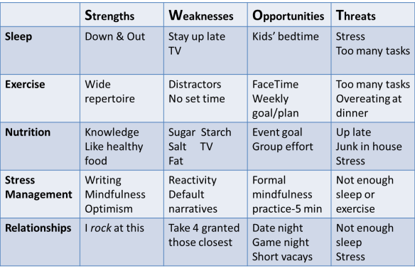 Health Habits SWOT grid